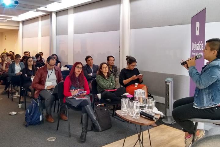 """Nace en Bogotá..."" Primera red de Litigantes LGBT"